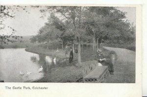 Essex Postcard - The Castle Park - Colchester - Ref TZ883