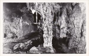 New Mexico Carlsbad Caverns The First Spring Real Photo