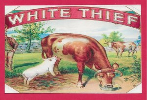 H-012 - White Thief Cigar Box Label Contemporary Picture Postcard