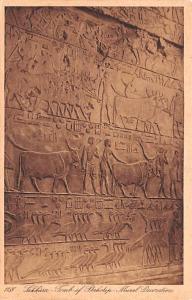 Sakkarah Egypt, Egypte, Africa Tomb of Ptahotep Mural Decoration Sakkarah Tom...
