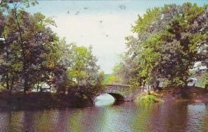 Stone Bridge In Beardsky Park Bridgeport Connecticut 1984