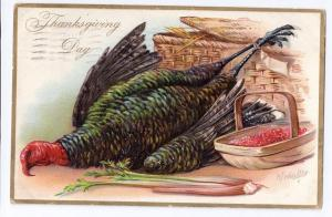 Thanksgiving Postcard Tuck Embossed Turkey AS R J Wealthy