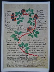 Historical Document BLACKBERRY FROM A HERBAL BOOK at BURY ST. EDMUNDS c1100 RPPC