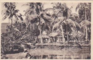 India Village Scene Near Calcutta