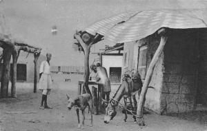 Eritrea - Vita e costumi della popolazione 1939