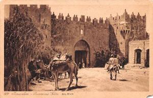 Israel Old Vintage Antique Post Card Jerusalem Damascus Gate Unused