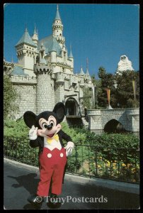 Mickey Welcomes You