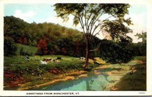 Vermont Greetings From Manchester Curteich