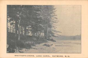 Raymond New Hampshire Lake Carol Whittier's Grove Vintage Postcard JD933693