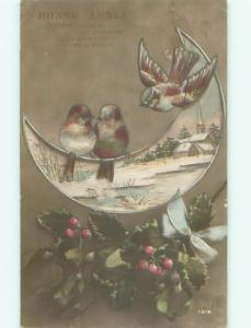 foreign Old Postcard BIRD SITTING ON CRESCENT MOON AC2860
