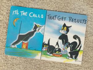 Postcard Comic It's The Calls That Get Results Risque Cartoon Cat