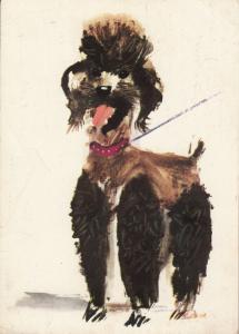 ARTIST SIGNED JANUSZ GRABIANSKI drawn dog postcard