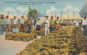 TARPON SPRINGS, Florida, 1930-40s; Scene at the Sponge Exchange