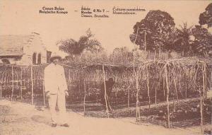 Belgian Congo Cultures Maraicheres