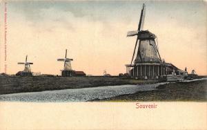 Netherlands Souvenir Wind Mills Moule Postcard