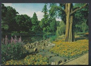 Middlesex Postcard - The Lake, Syon Park, Brentford   T7753