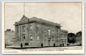Greeley Colorado~City Hall~In Course of Construction~Publ Greeley Tribune~1908