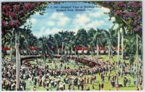 HIALEAH, Florida  FL    Unusual View WALKING RING  ca 1940s Linen   Postcard