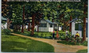 Mammoth Cave National Park KY Postcard TRAIL SIDE CABINS Roadside Linen 1945