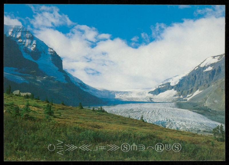 Jasper National Park - The Columbia Icefields