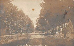 LPS53 Sherburne New York Street View Postcard RPPC