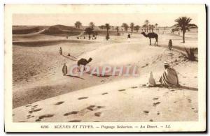 Old Postcard Landscape At dersert Saharan Camel