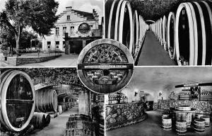 Mayschossser Winzer Verein Musst du in Mayschoss Wine Barrels