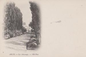 Arles Les Alicamps ND Photo Antique Drawing Painting French Postcard