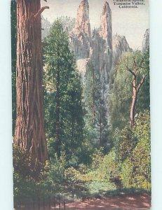 Divided-back NATURE Yosemite Valley In Park - Near Stockton & Modesto CA AD8405