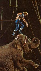 Ringling Bros. & Barnum & Bailey Circus - Gunther Gebel-Williams, Animal Trainer