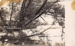Mazomanie Wisconsin~Fence Along Black Earth Creek~Trees Over Water~1909 RPPC