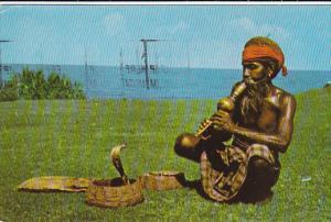 Snake Charmer With Cobra Snake, Ceylon-Sri Lanka, PU-1960