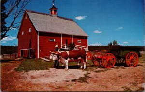 Ross Farm New Ross Nova Scotia NS c1971 Vintage Postcard F15