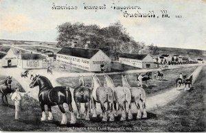 Bushnell Illinois Trumans Pioneer Stud Farm Horses Vintage Postcard JI658209
