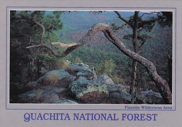 Arkansas Quachita National Forest Flatside Wilderness Area