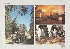 Tunisia Gabes the palm plantation market place mausoleum of Sidi Boulbaba