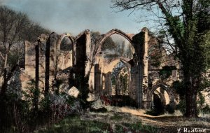 Les Ruines de l'Abbaye,Meliun,France BIN