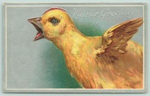 Easter~Close Up Squawking Crowing Rooster Chick~Silver Back Embossed~Germany
