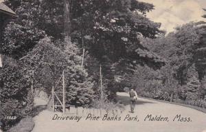 Driveway Pine Banks Park, Malden, Massachusetts, PU-1909