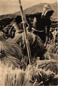 CPA INDONESIA Pentani Indonesia sibuk dengan pemotongan padi (341642)