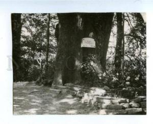 160465 CEMETERY TOMB Se Dus TURAIDAS ROZE old Photo Card