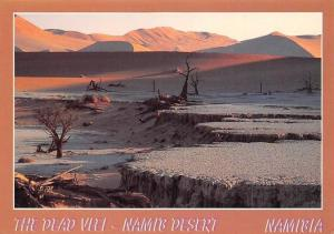 Namibia The Dead Vlei, Namib Desert, The Occasional Flow of the Tsauchab River