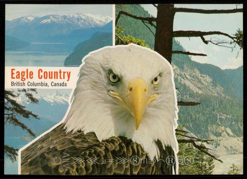 Eagle Country - British Columbia, Canada