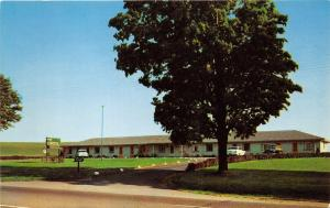 East Avon New York~Stratford Motel~Classic Cars Parked~1950s Postcard
