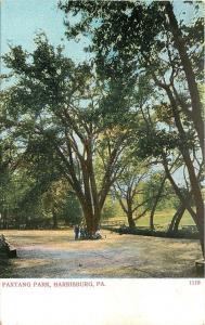 Harrisburg Pennsylvania~Paxtang Park~Boys Gather 'Round Tree~Bridge~1905