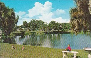 Florida New Port Richey Scenic Orange Lake Is Situated In The Heart Of New Po...
