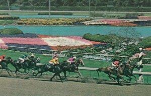 INGLEWOOD, California , 1950-60s; Hollywood Park, Horse Race Track