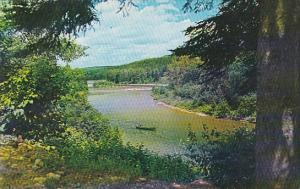 Canada New Brunswick Upsalquitch Upsalquitch River