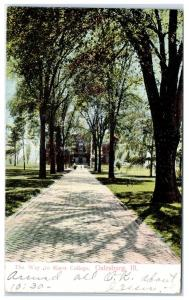 1907 The Way to Knox College, Galesburg, IL Postcard