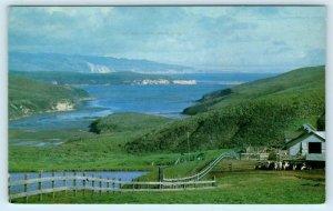 DRAKES ESTERO, Point Reyes National Seashore, CA ~ Marin County 1972   Postcard